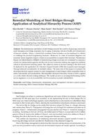 Remedial modelling of steel bridges through application of analytical hierarchy process (AHP)